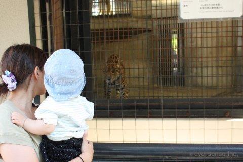 動物園 お出かけ