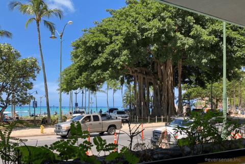 ハワイ ワイキキ 海