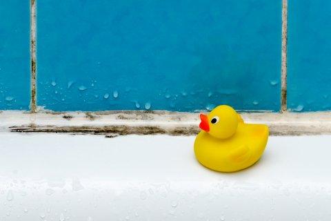 お風呂 おもちゃ カビ