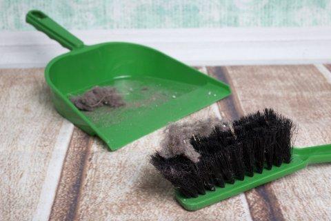 ホコリ 掃除