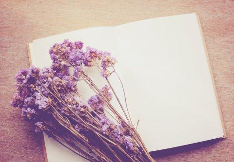 花 ノート イメージ