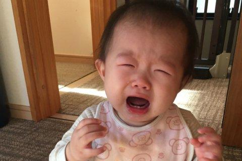 要出典 赤ちゃん 後追い 泣く