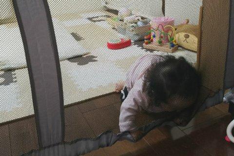 要出典 赤ちゃん 後追い ガード