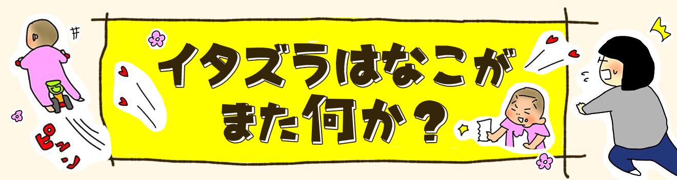 育児漫画 taec0 インスタ 人気 イタズラはなこがまた何か?