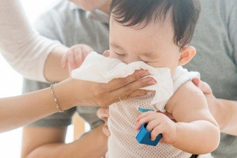 赤ちゃん 花粉症 鼻水