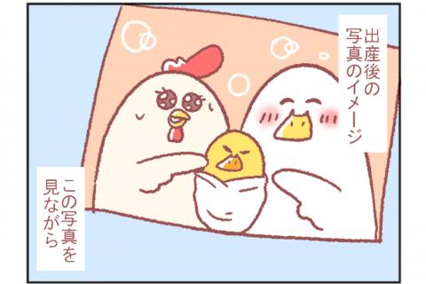 鳥谷丁子のオモテ育児・ウラ育児#9「産後の写真」 連載9