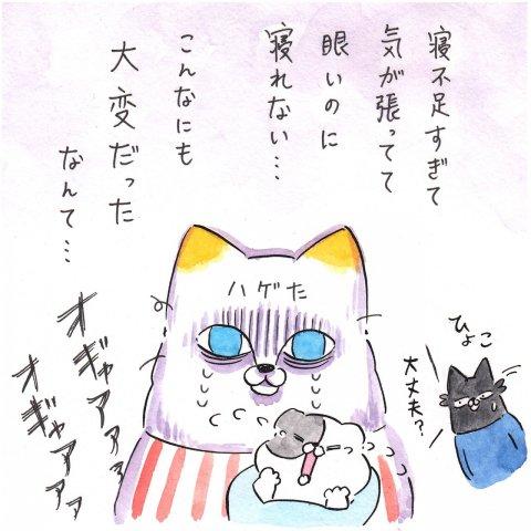 育児漫画 Anri 猫かわいがりラプソディー 1話