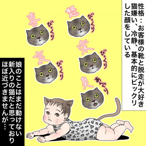 ムチコ ほっこりしない猫と育児 1話
