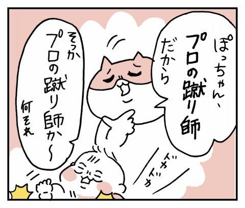 せるこさん家の親バカ育児 第4話