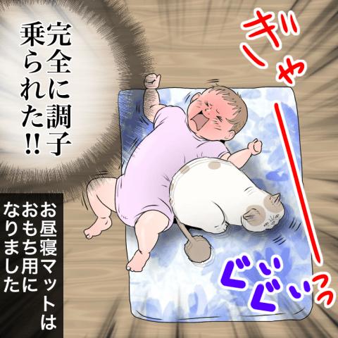 ムチコ ほっこりしない猫と育児 6話