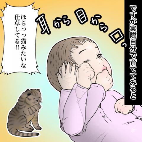 ムチコ ほっこりしない猫と育児 11話