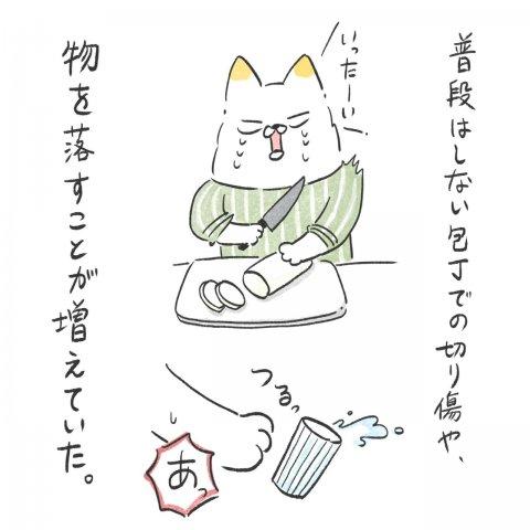 育児漫画 Anri 猫かわいがりラプソディー 11話