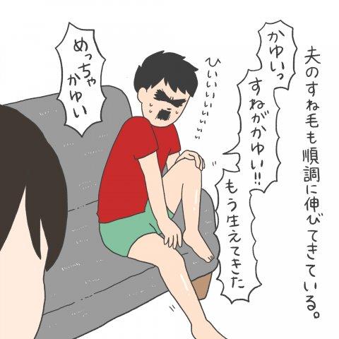 チリツモケ!? 連載4