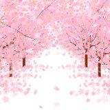 桜 アイキャッチ
