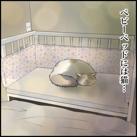 むちこ ほっこりしない猫と育児 16