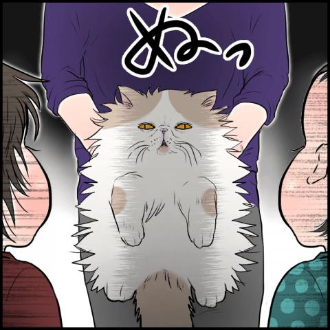 ムチコ ほっこりしない猫と育児 17
