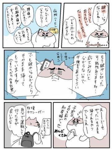 せるこさん 出産レポ3話4