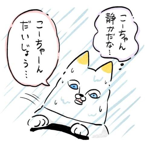 あんりさん 猫かわいがりラプソディー 20