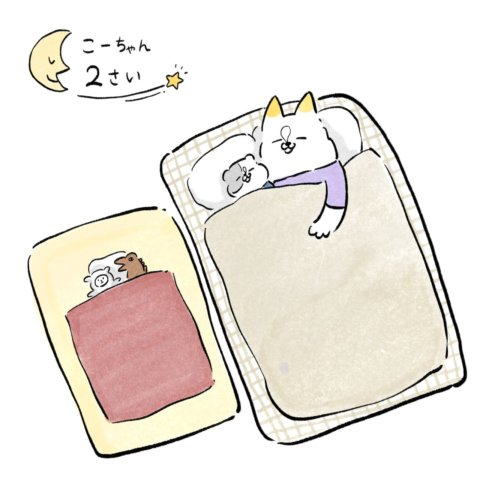 あんりさん 猫かわいがりラプソディー 21