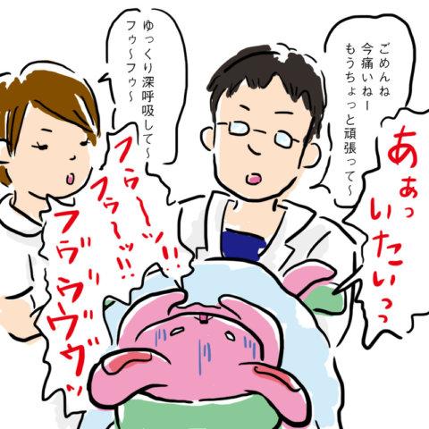 しぃさん1