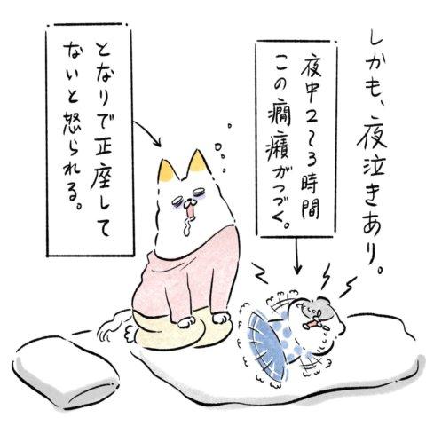 あんりさん 猫かわいがりラプソディー 30