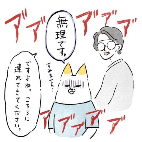 あんりさん 猫かわいがりラプソディー 32