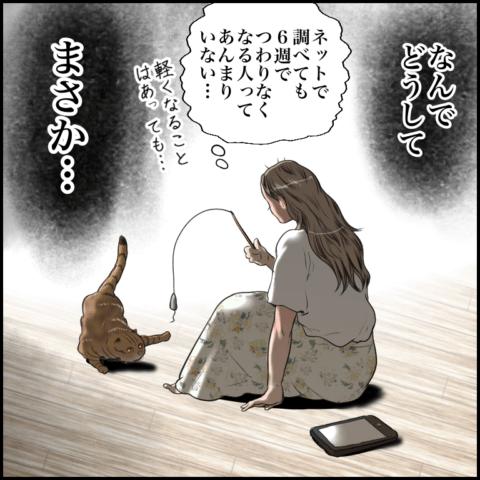 ムチコさん ほっこりしない猫と育児 32
